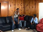 Ebony gay black studs and black men with man boobs  gay teen thumbnail galleries